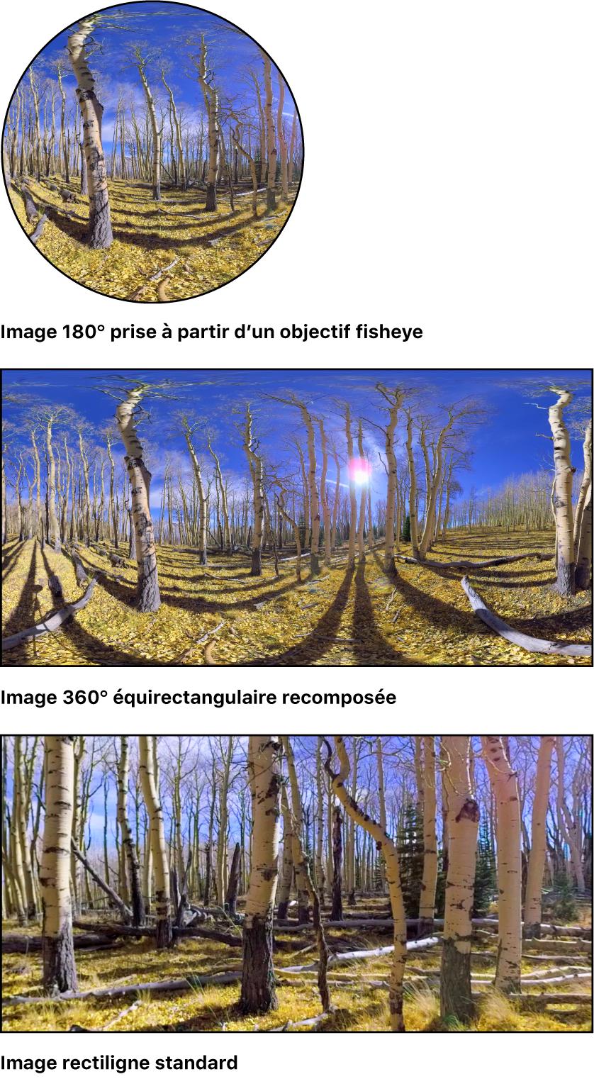 Image fisheye simple, image 360° assemblée et image rectiligne standard