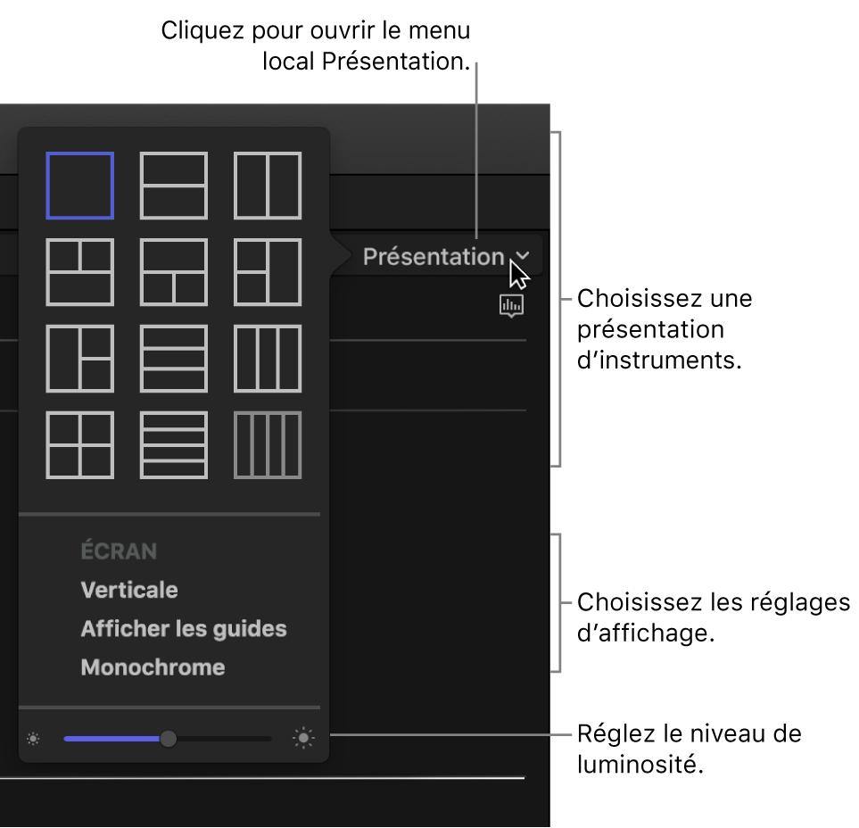 Options du menu local Présentation au-dessus de l'affichage des instruments vidéo