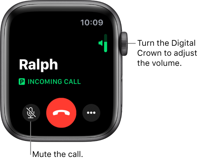 During an incoming phone call, the screen shows the horizontal volume indicator at the top right, the Mute button at the bottom left, the red Decline button, and the More Options button.