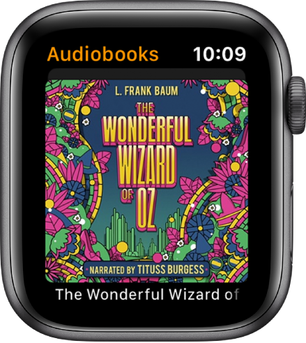 The Audiobooks screen showing a book's cover art.