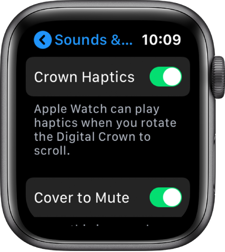 The Crown Haptics screen, showing the Crown Haptics switch turned on.