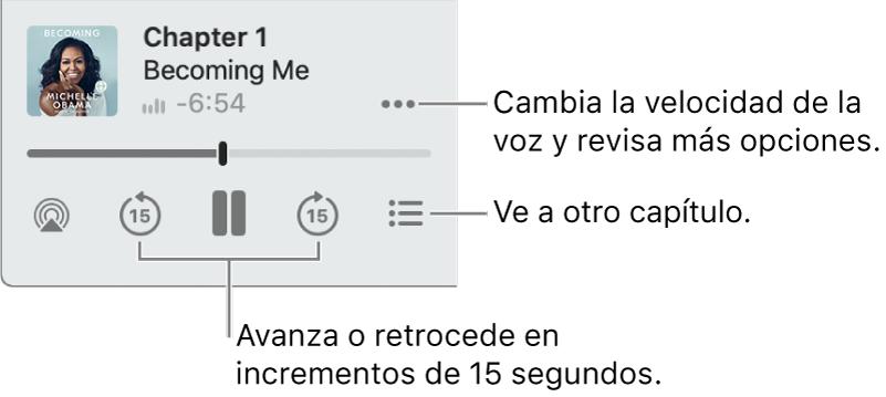 """El reproductor de audiolibros de Apple Books, mostrando el botón """"Más opciones"""" (cerca de la esquina superior derecha), el botón de la Tabla de contenido (cerca de la esquina inferior derecha) y los botones para Avanzar y Retroceder (cerca de la parte inferior izquierda y derecha)."""