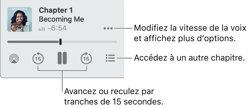 Le lecteur de livre audio dans Livres, qui affiche le bouton Plus d'options (près du coin supérieur droit), le bouton Table des matières (près du coin inférieur droit) et les boutons Saut vers l'avant et Saut vers l'arrière (au bas à gauche et à droite).