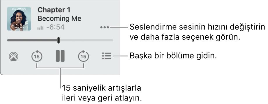 Daha Fazla Seçenek düğmesini (sağ üst köşe tarafında), İçindekiler düğmesini (sağ alt köşe tarafında), İleriye Doğru Atla ve Geriye Doğru Atla düğmelerini (sol alt ve sağ alt köşe tarafında) gösteren Apple Kitaplar'daki sesli kitap çalar.
