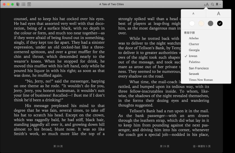 擁有自訂外觀的書籍和「外觀」選單正在顯示所選的文字大小、背景顏色和字體。