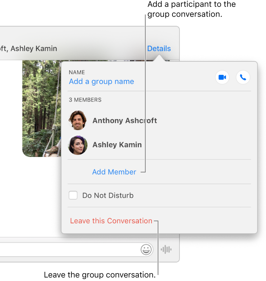 Details view, which appears after you click Details in a group conversation. Add Member appears below the name of the last participant in the list, and Leave this Conversation is at the bottom of the dialog.
