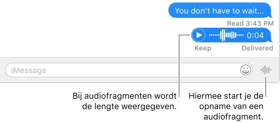Een gesprek in het Berichten-venster, met de knop 'Verstuur gesproken bericht' naast het tekstveld onder in het venster.