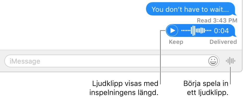 En konversation i fönstret Meddelanden med knappen Skicka röstmeddelande bredvid textfältet längst ned i fönstret.