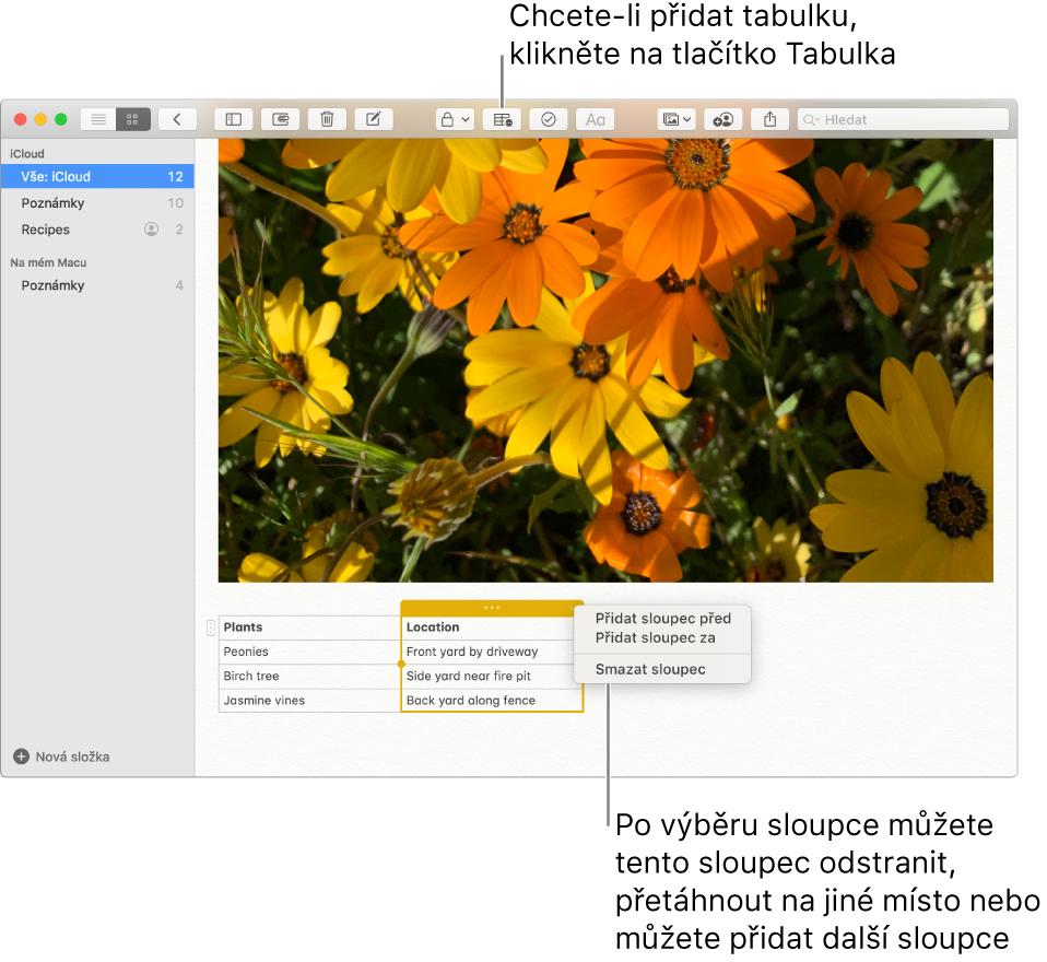 Okno aplikace Poznámky se zobrazeným tlačítkem Tabulka – kliknutím na ně přidáte tabulku. Vobsahu poznámky se vybere sloupec tabulky. Pak můžete přidat nebo odstranit sloupce nebo také vybraný sloupec přetáhnout na nové místo.