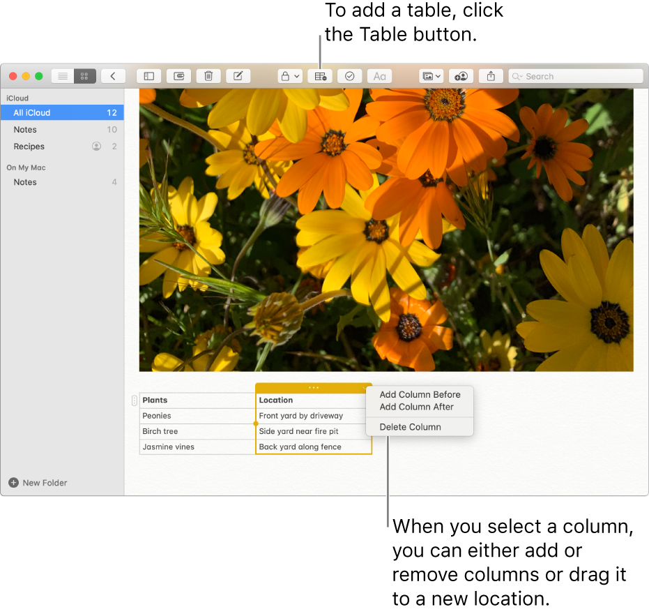 The Notes window showing the Table button — click it to add a table. Within the note content, a table column is selected so you can either add or remove columns or drag it to a new location.