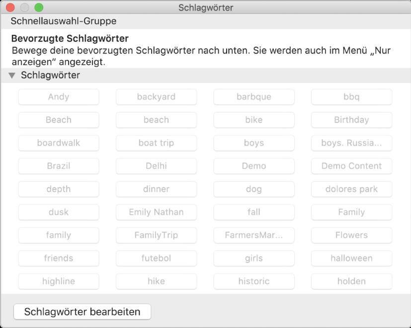 """Das Fenster """"Schlagwortmanager""""."""
