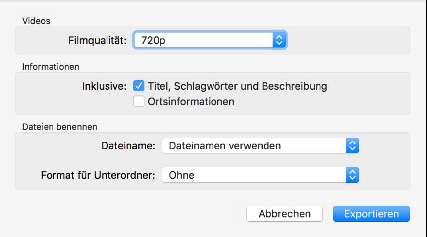 Ein Fenster mit den Optionen zum Exportieren von Videos.