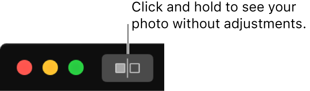 The Without Adjustments button, next to the window controls in the top-left corner of the window.