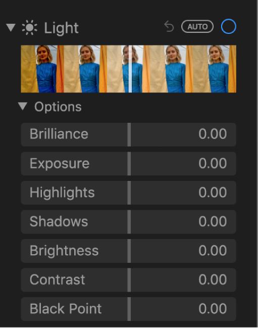 The Light area of the Adjust pane showing sliders for Brilliance, Exposure, Highlights, Shadows, Brightness, Contrast and Black Point.
