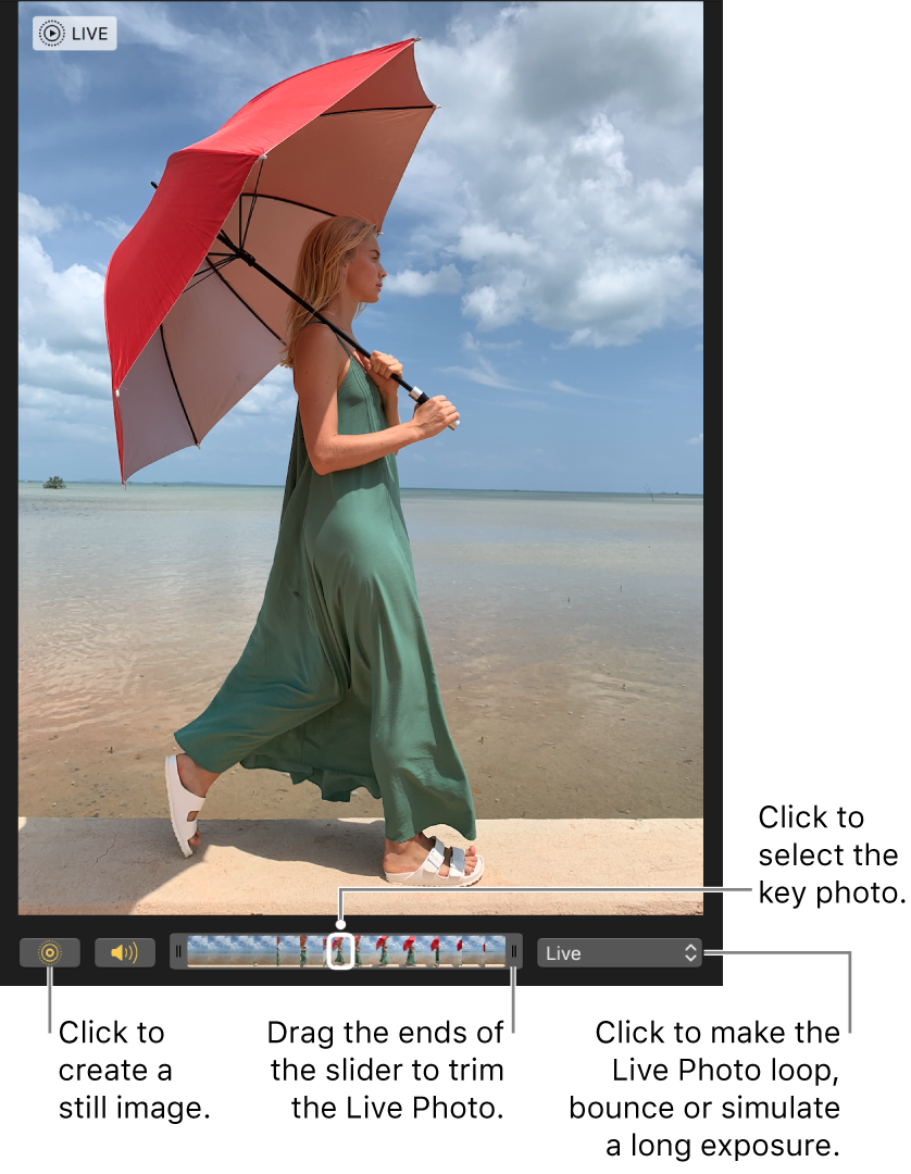 A Live Photo in editing view with a slider beneath it showing the frames of the photo. The Live Photo button and Speaker button are to the left of the slider, and to the right is a pop-up menu you can use to add a loop, bounce or long exposure effect.