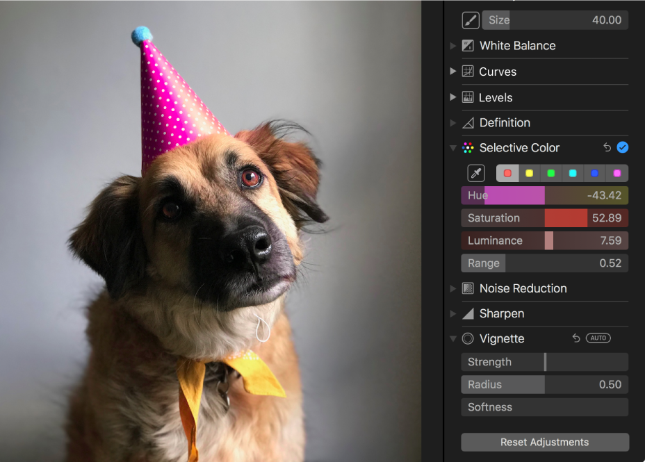 A photo after a selective color adjustment.
