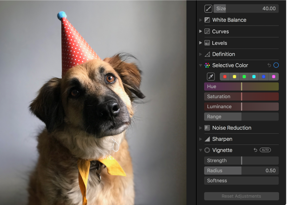 A photo before a selective color adjustment.