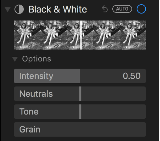 Područje Crno i bijelo prozora Prilagodi koji prikazuje kliznike za Intenzitet, Neutralno, Ton i Zrnatost.