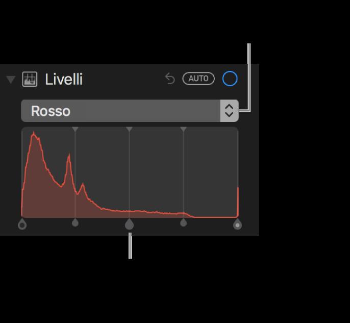 I controlli di Livelli e l'istogramma per modificare i rossi in una foto.