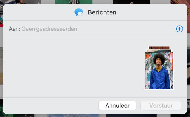 Een dialoogvenster voor het toevoegen van ontvangers bij het delen van foto's uit de app Foto's via Berichten.