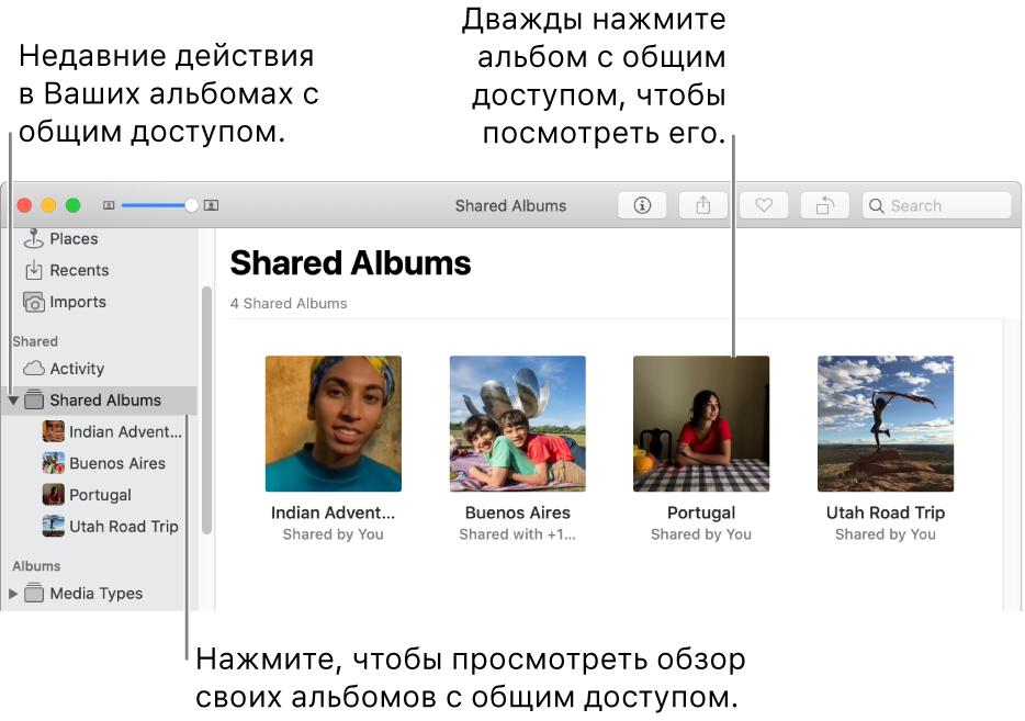 Панель «Общие альбомы» окна «Фото» с общими альбомами.
