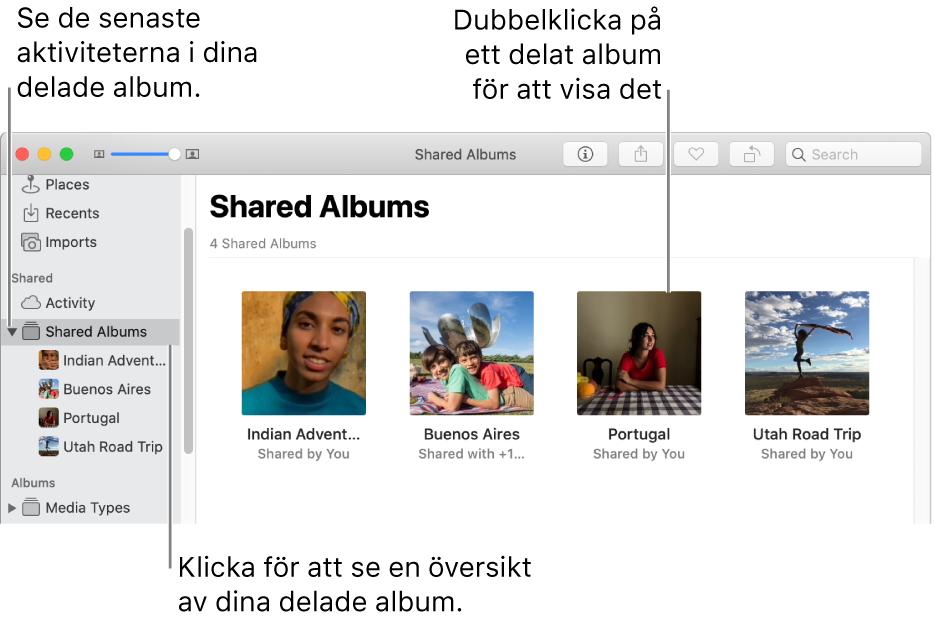 Panelen Delade album i Bilder-fönstret med delade album.