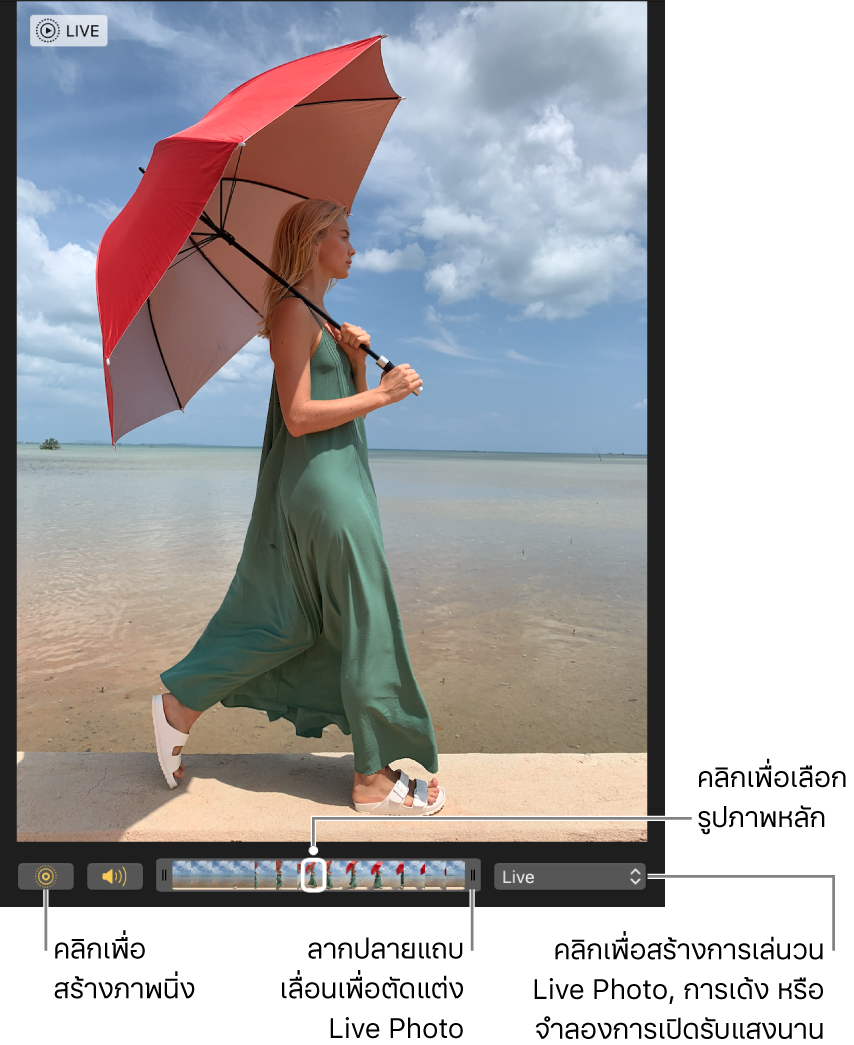 Live Photo ในมุมมองการแก้ไขโดยมีแถบเลื่อนอยู่ด้านใต้นั้นซึ่งแสดงกรอบของรูปภาพ ปุ่ม Live Photo และปุ่มลำโพงอยู่ทางซ้ายของแถบเลื่อน และทางขวาคือเมนูที่แสดงขึ้นที่คุณสามารถใช้ในการเพิ่มเอฟเฟ็กต์เล่นวน เด้ง หรือเปิดรับแสงนาน