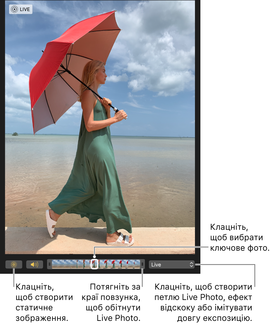 Live Photo у поданні редагування з повзунком внизу, з кадрами фотографії. Кнопка Live Photo і кнопка «Динамік» зліва від повзунка. Справа є спливне меню, яке можна використовувати, щоб додати петлю, тремтіння і довгу експозицію.