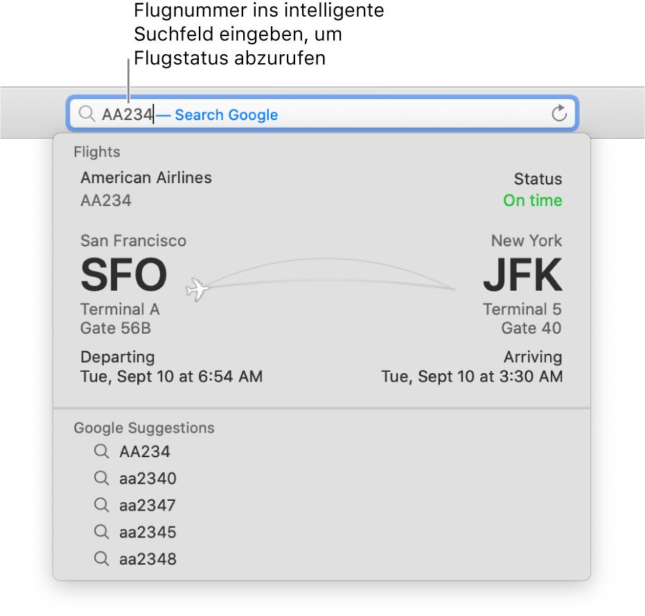 Eine in das intelligente Suchfeld eingegebene Flugnummer und der direkt darunter eingeblendete Status des Flugs.
