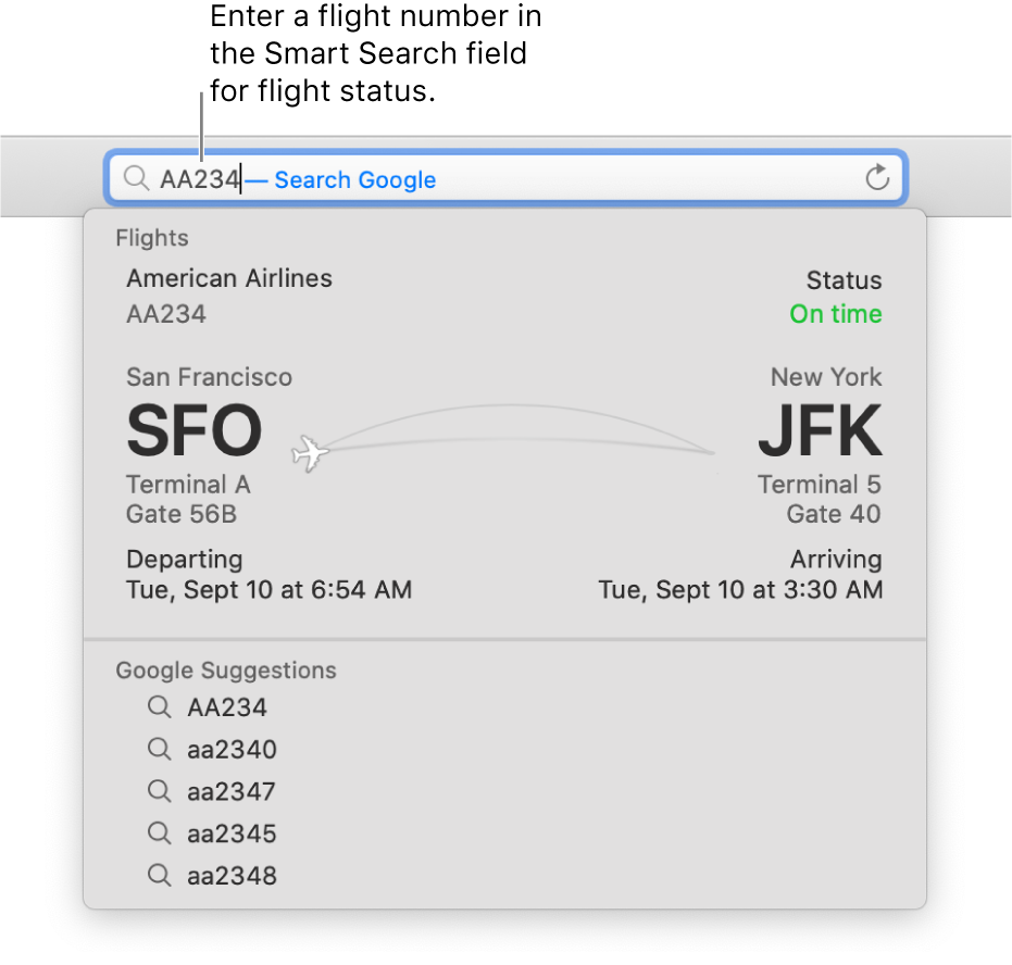 A flight number entered in the Smart Search field, with the status of the flight shown directly below.