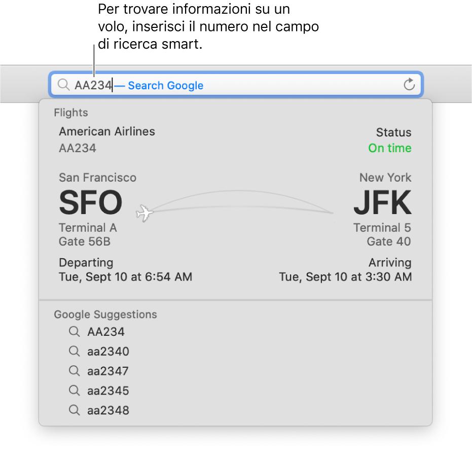 Un numero di volo inserito nel campo di ricerca smart, con lo stato del volo mostrato direttamente di seguito.