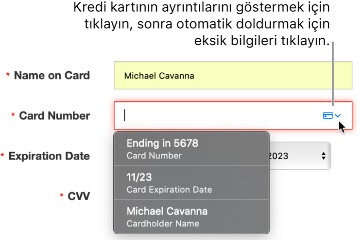 Ayrıntısı eksik olan kredi kartı bilgileri ve otomatik doldurma kullanılabilir seçenekleri gösteriyor.