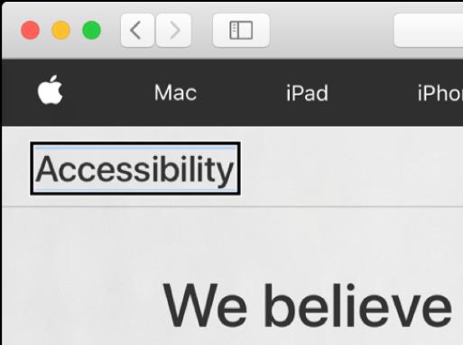 화면의 단어 '손쉬운 사용' 위에 놓여 있는 짙은 직사각형 테두리의 VoiceOver 커서.