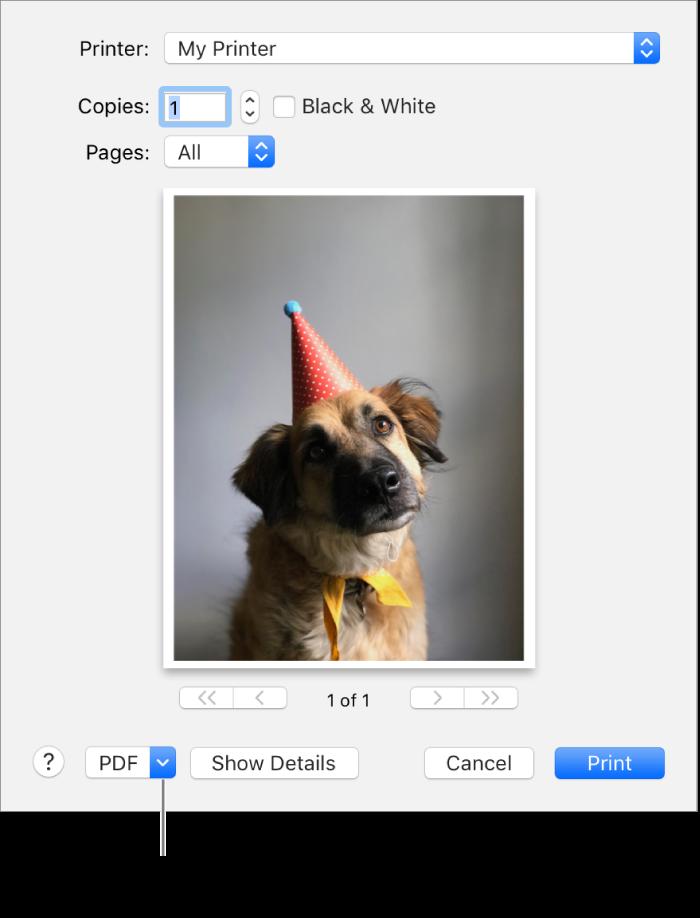 Klik på lokalmenuen PDF, og vælg Gem som PDF.