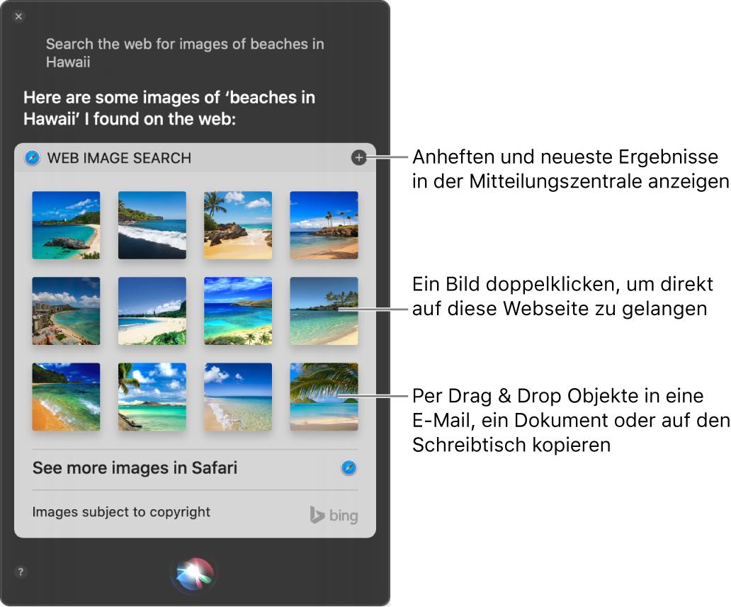 """Das Siri-Fenster mit den Ergebnissen von Siri zur Anfrage """"Suche im Internet nach Bildern von Stränden auf Hawaii."""" Du kannst die Ergebnisse in der Mitteilungszentrale anheften, auf ein Bild doppelklicken, um die Webseite mit dem Bild zu öffnen, oder ein Bild in eine E-Mail oder Dokument oder auf den Schreibtisch bewegen."""