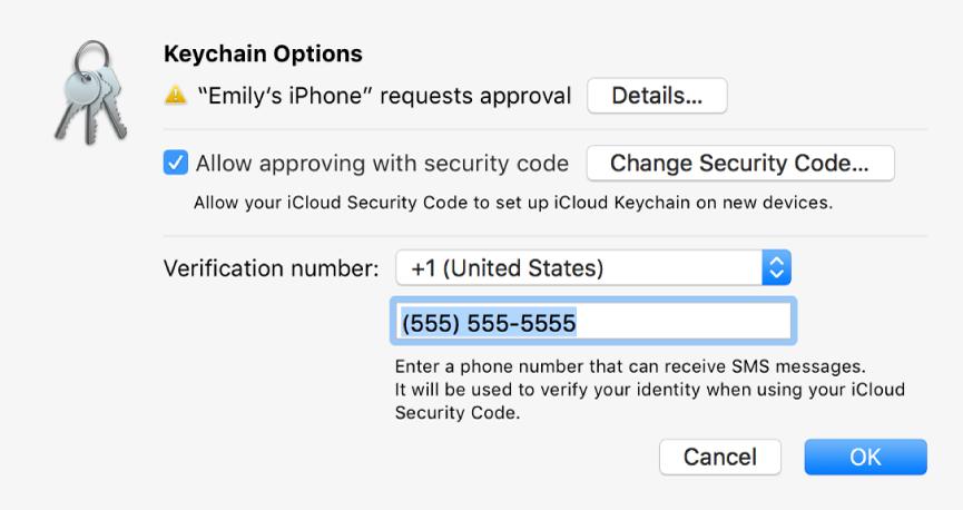 """Das Dialogfenster mit iCloud-Schlüsselbund-Optionen mit dem Namen des Geräts, das eine Bestätigung anfordert, mit der Taste """"Details"""" daneben."""