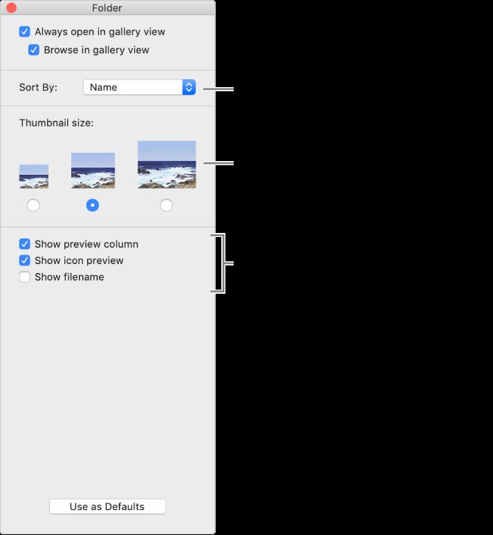 Opciones de visualización como galería: puedes seleccionar cómo se ordenan los elementos, establecer el tamaño de las miniaturas, mostrar la previsualización de un elemento seleccionado en una columna separada, mostrar información de previsualización en íconos y mostrar el nombre del archivo.