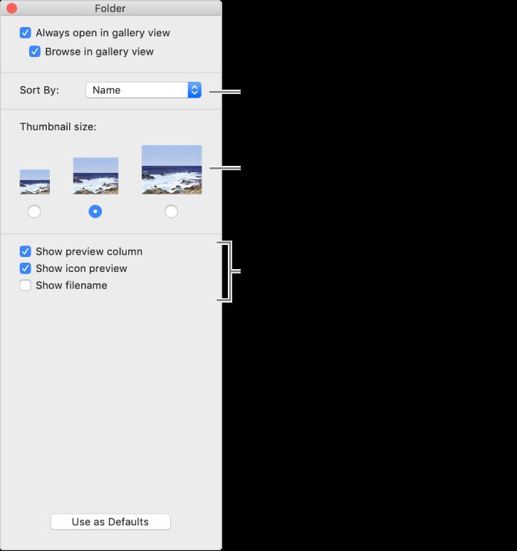 ギャラリー表示のオプション: 項目がグループ化されて並べ替えられる方法の選択、サムネールのサイズの選択、選択した項目の個別カラムでのプレビュー表示、プレビュー情報のアイコンでの表示、およびファイル名の表示を行うことができます。