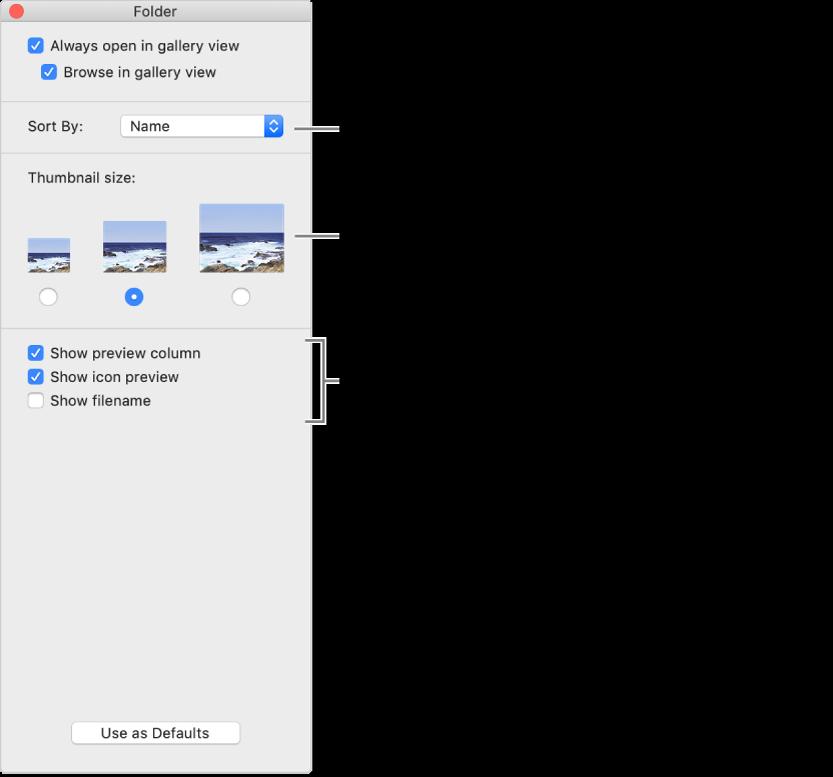 Pilihan paparan galeri: Anda boleh memilih cara item diisih, memilih saiz untuk imej kecil, menunjukkan pratonton item yang dipilih dalam lajur berasingan, menunjukkan maklumat pratonton dalam ikon dan menunjukkan nama fail.