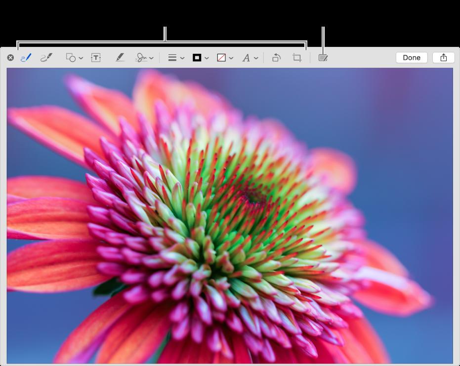 Uma imagem na janela Marcação a mostrar a barra de ferramentas de Marcação e a ferramenta para clicar para usar a Marcação do Continuidade num iPhone ou iPad que esteja por perto.
