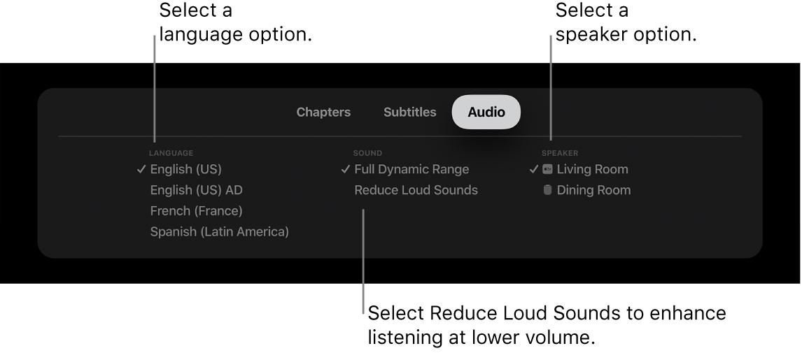 Audio menu during playback