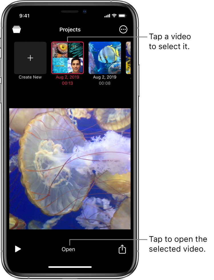 The Create New button and thumbnails for existing projects above a video image in the viewer, with an Open button below.