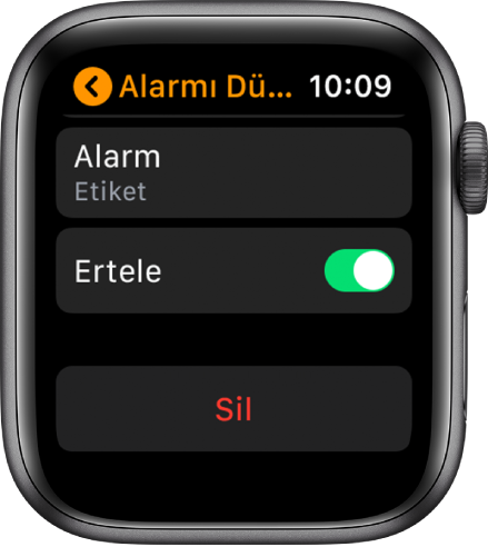 Altta Sil düğmesiyle birlikte Alarm düzenleme ekranı.