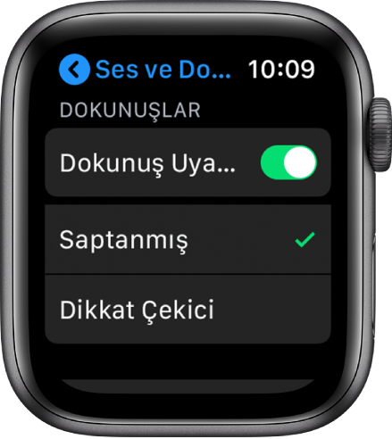 Apple Watch'ta Dokunuş Uyarıları anahtarı ile altında Saptanmış ve Dikkat Çekici seçeneklerinin olduğu Ses ve Dokunuş ayarları.