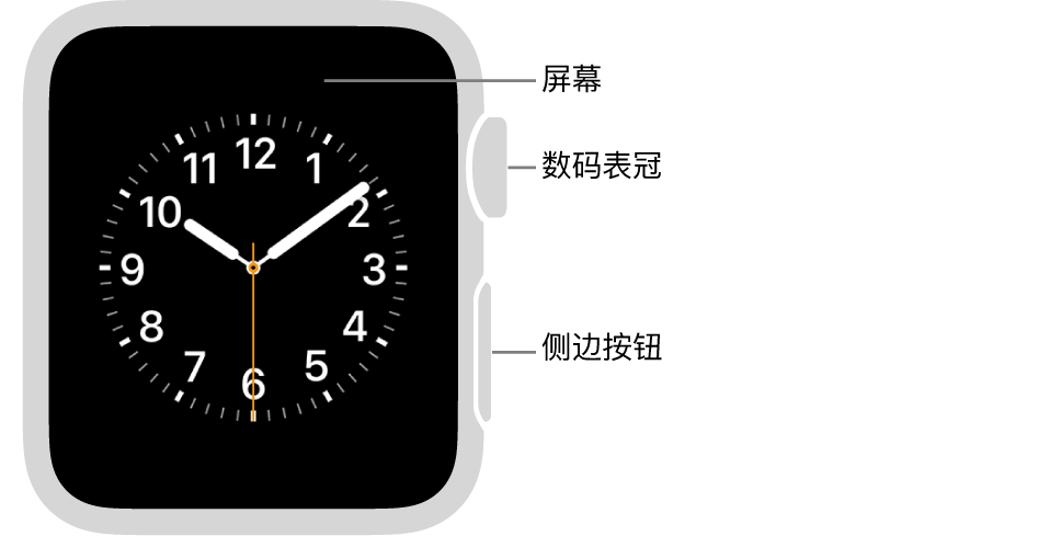 AppleWatch Series 3 及较早机型的正面,标注指示了屏幕、数码表冠和侧边按钮。