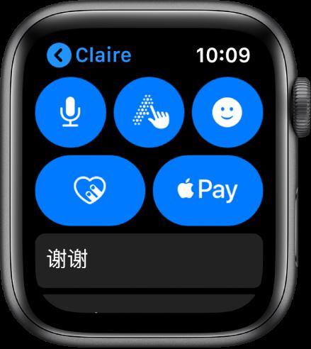 """""""信息""""屏幕在右下角显示 Apple Pay 按钮。"""