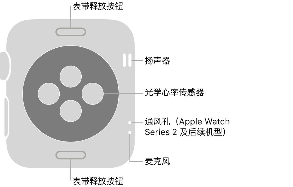AppleWatch Series 3 及较早机型的背面,标注指示了表带释放按钮、扬声器、光学心率感应器、通风孔和麦克风。