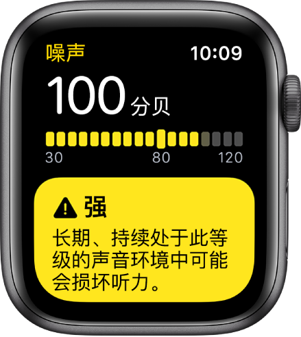 """""""噪声"""" App 显示 100dB 的噪声读数。长期暴露于此噪声级的警告显示在下方。"""