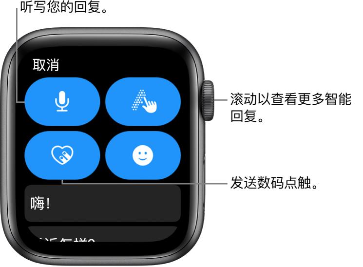 """回复屏幕显示""""听写""""、""""涂文字""""、""""数码点触""""和""""表情符号""""按钮。智能回复在下方。旋转数码表冠来查看更多智能回复。"""