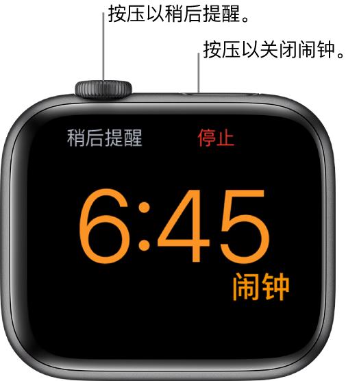 """侧放着的 AppleWatch,屏幕显示已响的闹钟。数码表冠下方是""""稍后提醒""""。""""停止""""位于侧边按钮下方。"""